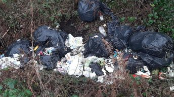 'The whole legislation around illegal dumping is way too soft'