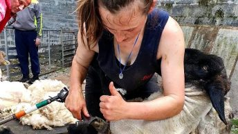 Joanne Devaney: 'It was nice to be home more last year to be on the farm'