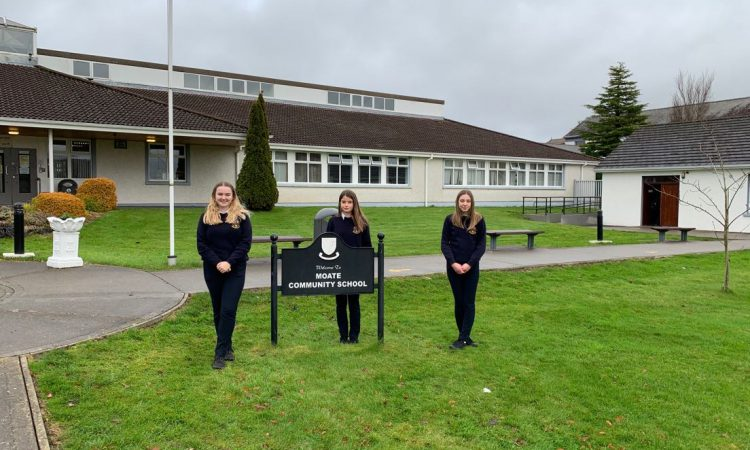 Westmeath TY students find new use for sheep wool