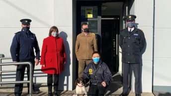 Stolen dog found in the UK and reunited with family in Cork
