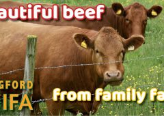 Longford IFA launches 'love local' family farm campaign