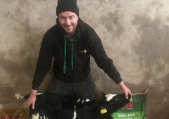 Give your calves the best start to life with GAIN Easi-Mix calf milk replacer