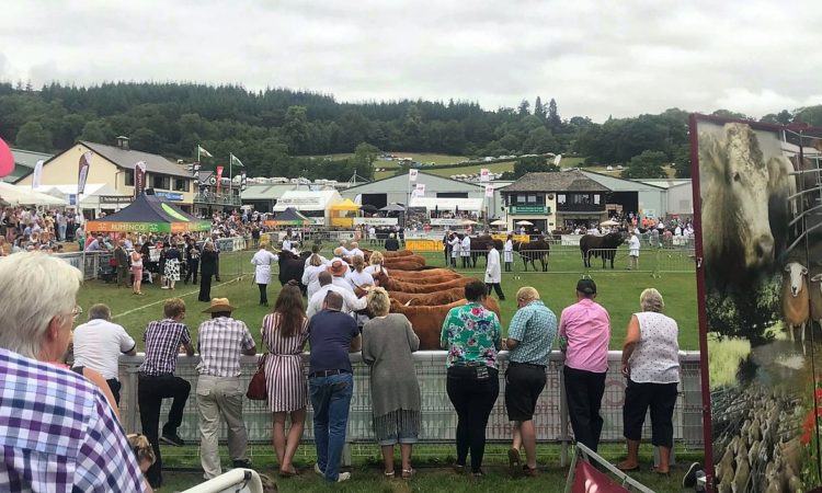 Royal Welsh Agricultural Show cancelled for 2021