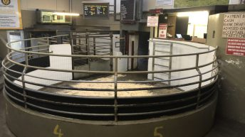 Mart status: Update on what marts are open and when opening sales are taking place