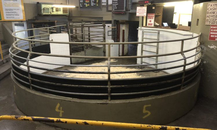 Wednesday's sheep sale at Roscommon Mart cancelled