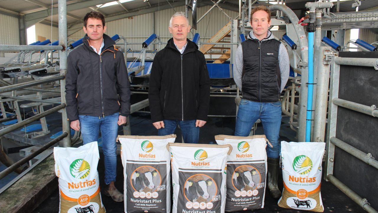 Heifer rearing focus is cornerstone to dairy farm expansion in Co. Sligo
