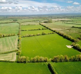 93ac in Kildare guiding at €12,000/ac, with 'Fontstown' series soil