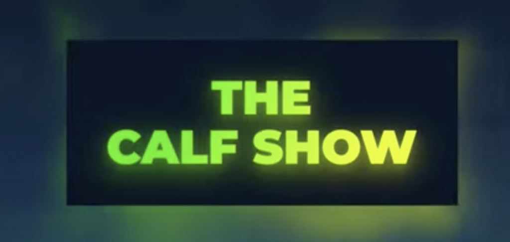 Video: 'The Calf Show' recap – From buying calves to turning them out