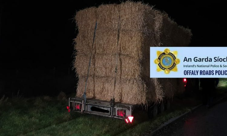 'Proceedings commence' against 4X4 and trailer stopped by Gardaí