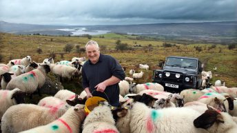 Sheep, sucklers and saving lives… all in a day's work for one Fermanagh farmer