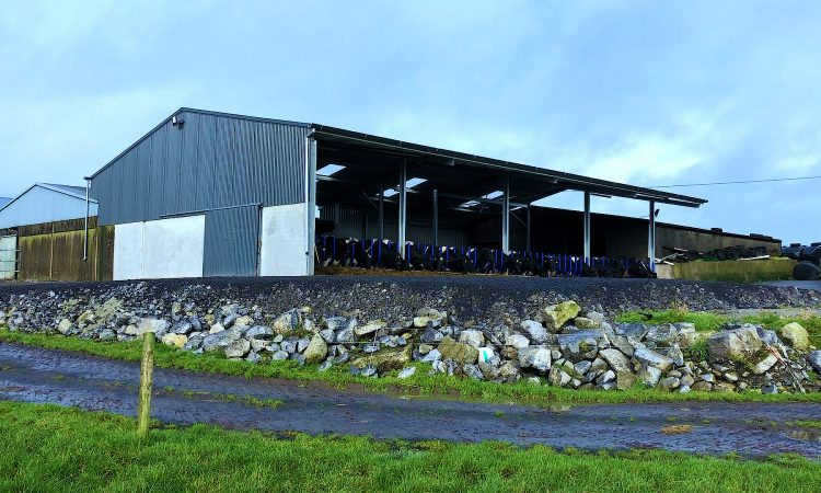 Buildings Focus: Tying in a new cubicle shed with 2 existing sheds to create 84 cubicles