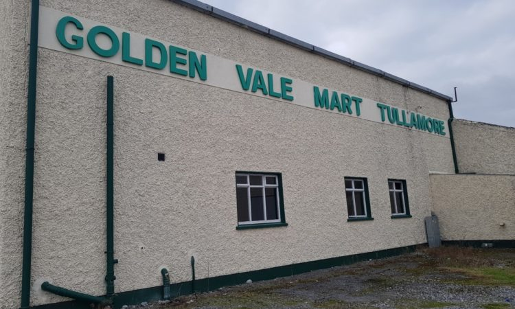 Store heifers sell up to €2.71/kg at Tullamore Mart