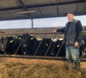 Beef Focus: Sticking with traditional suckler breeding in Co. Cavan