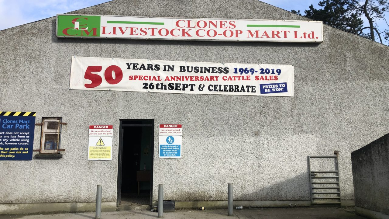 Pics and prices: Forward bullocks sell up to €2,000 at Clones Mart