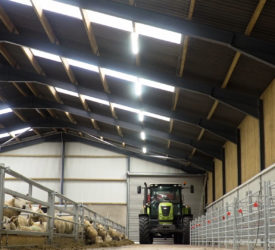 Buildings Focus: AgriLand's Michael Geary speaks to Sam Thompson about his new slatted sheep unit