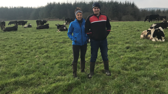 Dairy Focus: The journey from 50 to 120 cows at Cullencastle farm