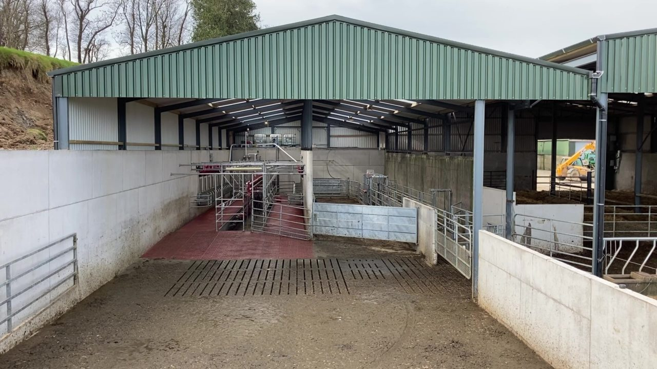 Buildings Focus: 16-unit parlour for a start-up 100-cow herd in Co. Wicklow