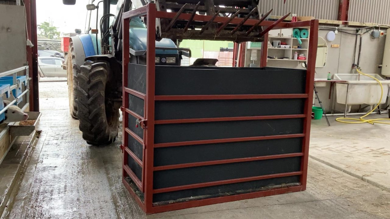 Video: Taking the hardship out of moving calves with the help of a calf transport crate