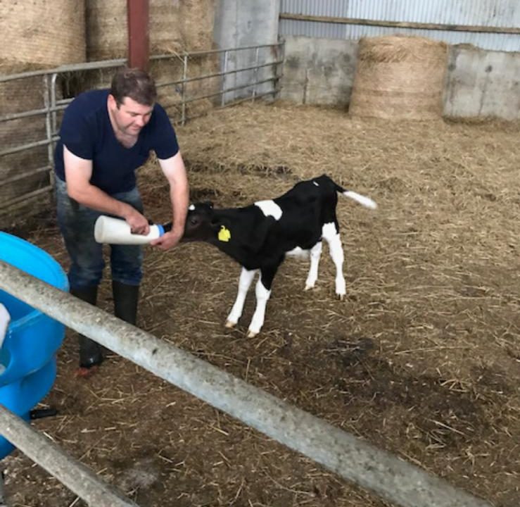 'John will be forever proud': 'Donate a calf' sale for palliative care a 'huge success'