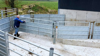 Loose shed and a first-class handling facility in Co. Tipperary
