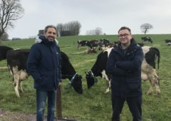 Halloumi cheese start-up has scope for farmers