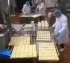 Daily Covid testing to replace isolation for UK food processing workers