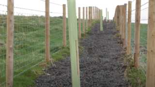Could you be one of NI's first Environmental Technology Farms?