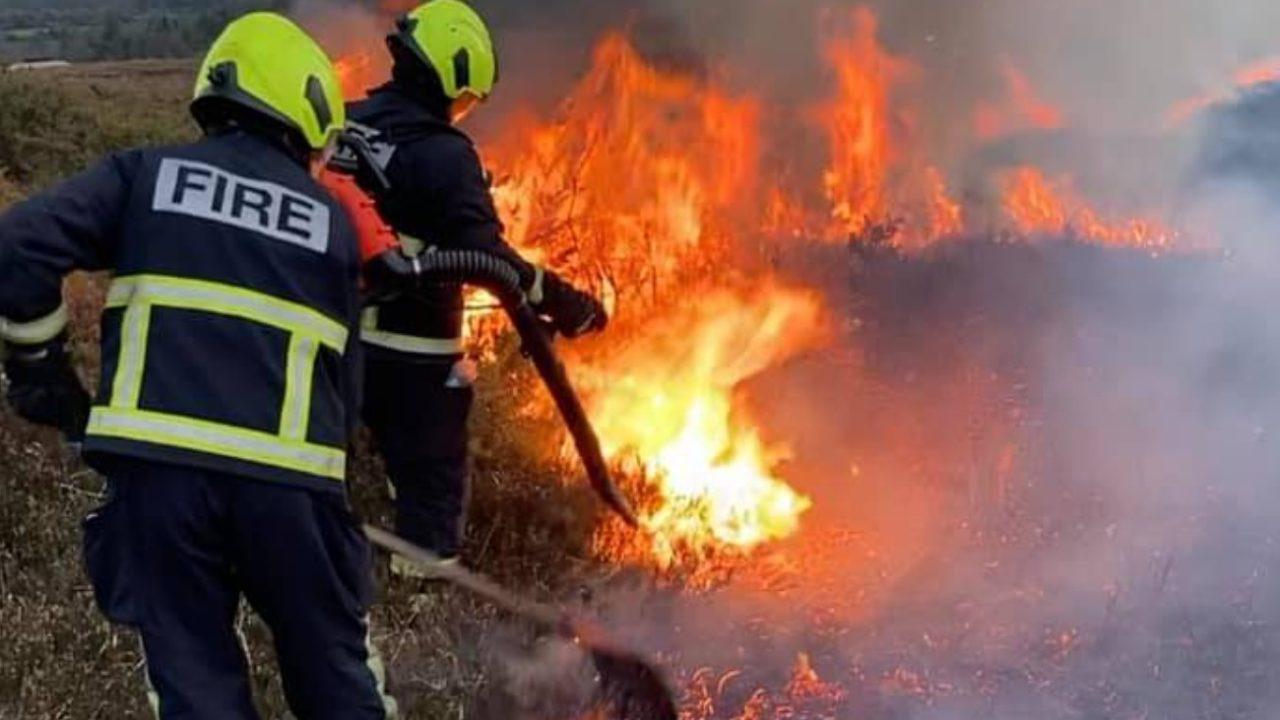 Pics: Firefighters battle gorse hilltop blaze in Laois