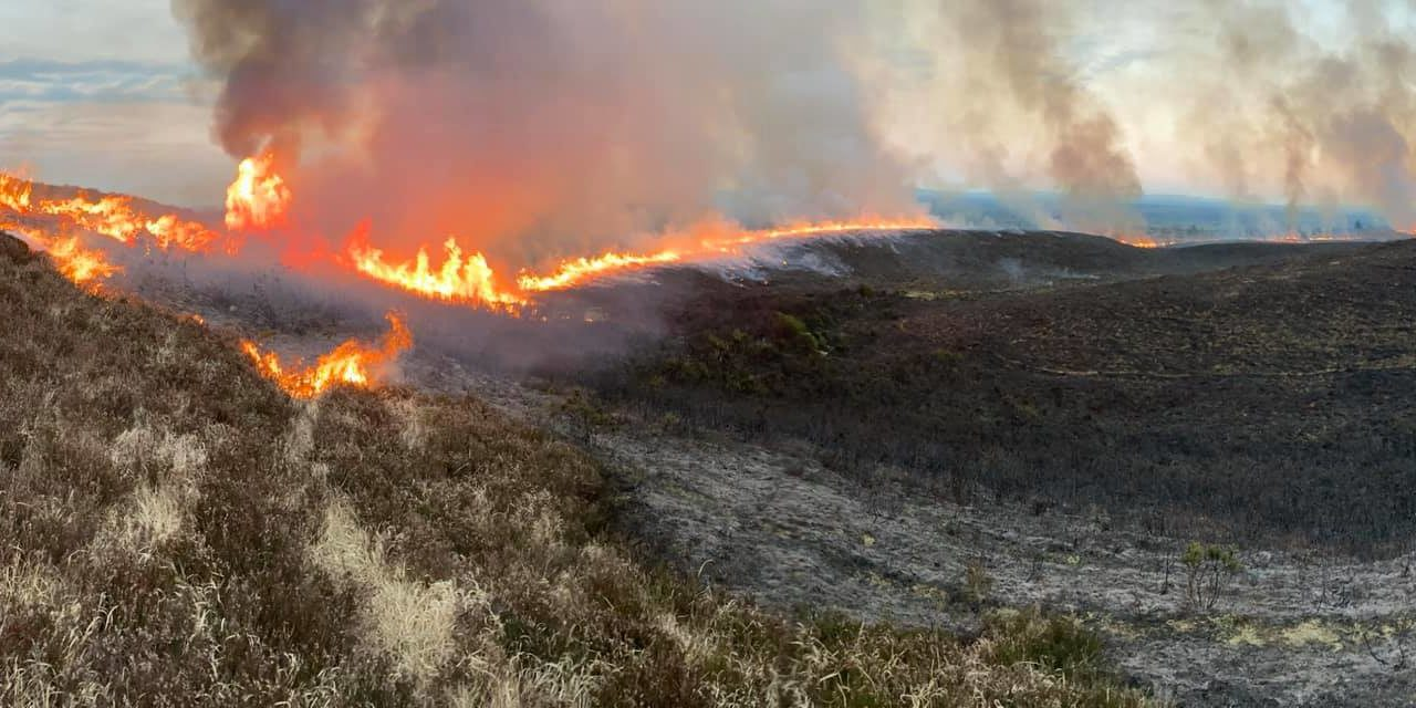 Fire risk notice issued by department ahead of dry spell