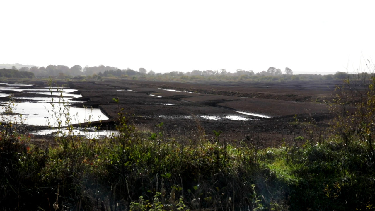 Bord na Móna moves to ease farmer fears over rewetting