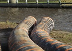 DAERA starts work monitoring NI sewage systems for Covid-19