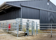 Buildings Focus: A loose shed and a top class handling facility in Co. Tipperary
