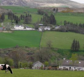 Now is a 'unique opportunity' to reinvent rural Ireland