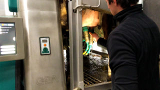 Buildings Focus: Going the robotic-milking route in Co. Roscommon