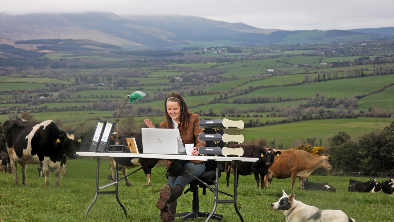 Ifac: Over 70% of farmers in favour of buying and selling online post-Covid