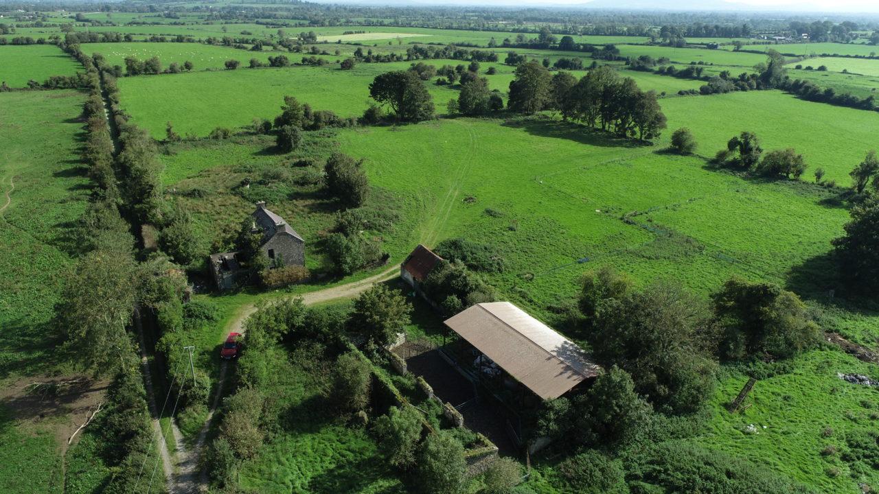 Bruff farm offers 'prime grazing land'