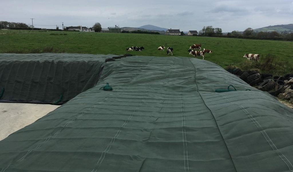 Reducing first-cut silage losses with Visqueen Clingseal