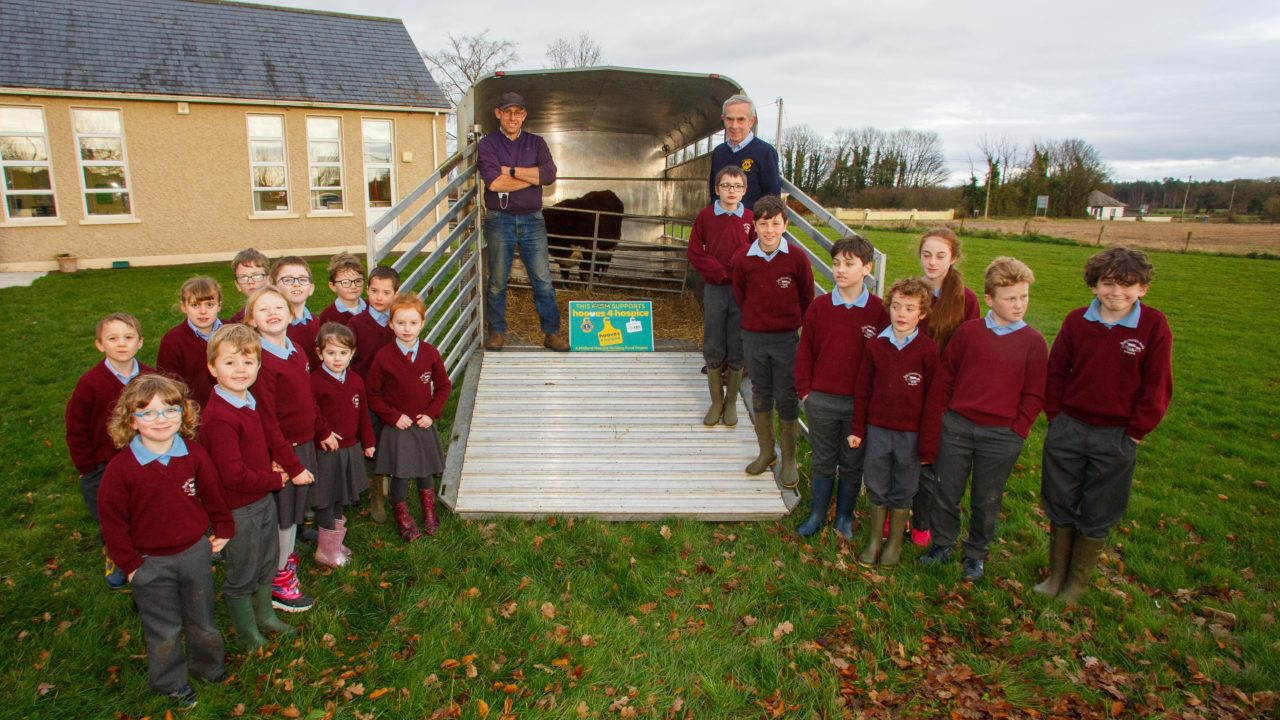 Hooves 4 Hospice campaign led by Westmeath farmer