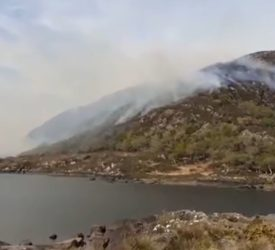 Killarney fire: 50 new conservation rangers to be recruited