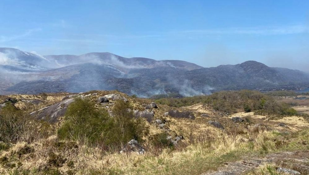 IWT calls for emergency measures 'to stop the cycle of infernos'
