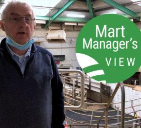 恩尼斯超市(Ennis Mart)的交易略有改善,羊肉价格达到每人147欧元