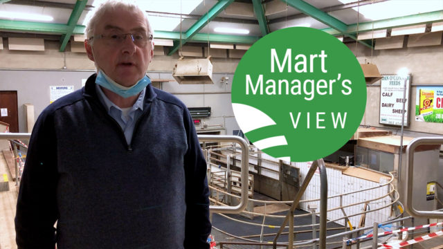 'Spring lambs were easier by as much as €10/head' – Martin McNamara