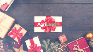 Merry Christmas from AgriLand