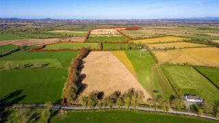 Photos: €950,000 Co. Kildare agricultural land up for auction