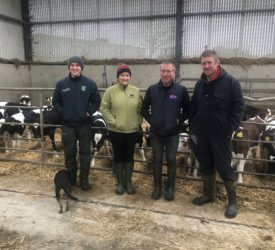 Dairy Focus: Milking 440 cows in the heart of the rebel county