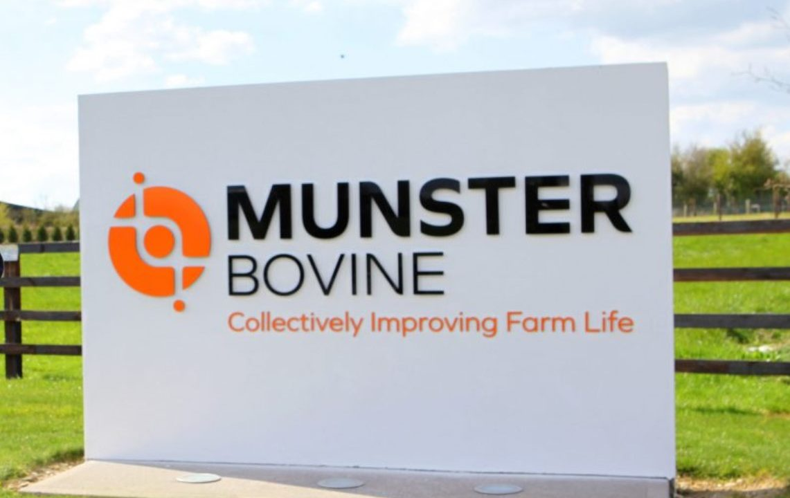 Munster Bovine CEO to leave company