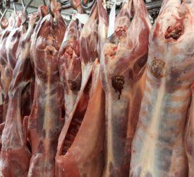 Sheep kill: Aftermath of Eid sees throughput fall over 13,500 head