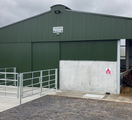 Buildings Focus: Leaving no stone unturned in this new suckler unit in Roscommon