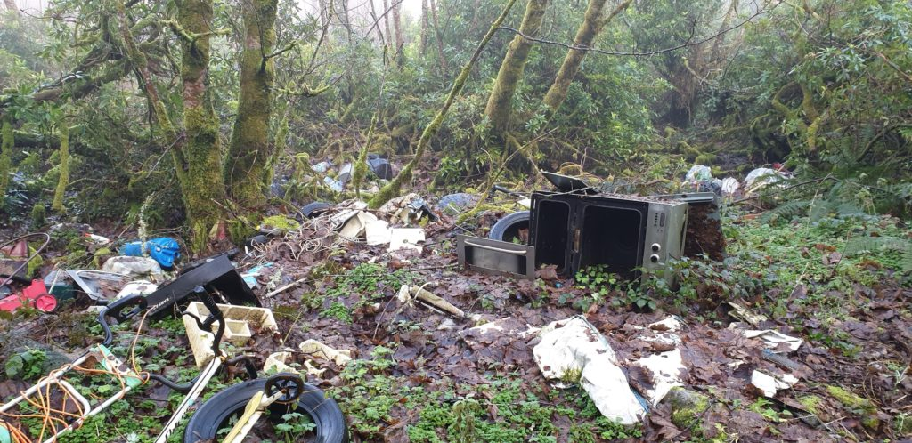 fly tipping in Coillte forests is a serious concern