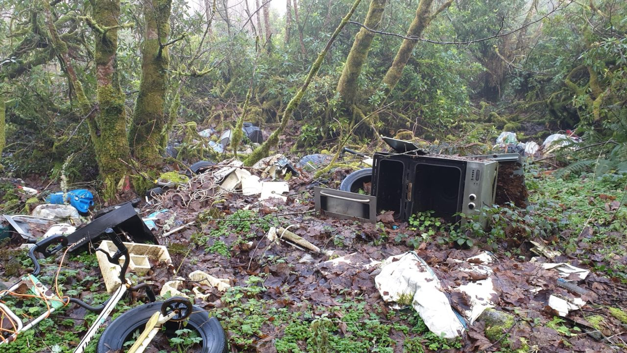 Illegal dumping 'increased by up to 25%' since start of Covid